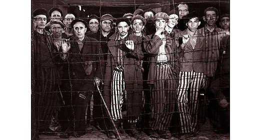 compare and contrast concentration camps of the holocaust In the holocaust, jews were sent to co  ncentration camps to await their death in these concentration camps, jews did not have any privacy in these concentration camps, jews did not have any privacy.