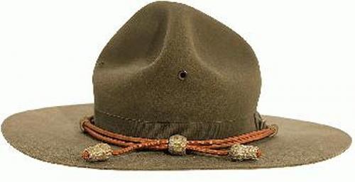 ARMY CAMPAIGN HAT INFO...U.s. Army Uniform Hat