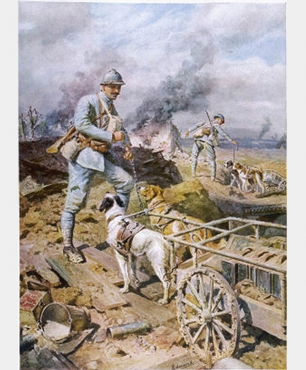 ''Dogs of Battle, Dogs of Mercy'' <BR> <br />(Vanity Fair, 1916)