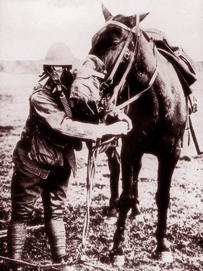 American Horses in the First World War  <br />(American Legion Monthly, 1936)