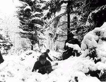 battle of the bulge essay example essays battle of the bulge