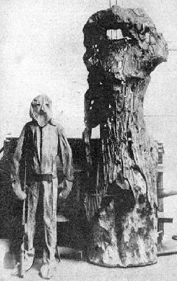 The Steel Tree Stump, Part II <br />(Literary Digest, 1919)
