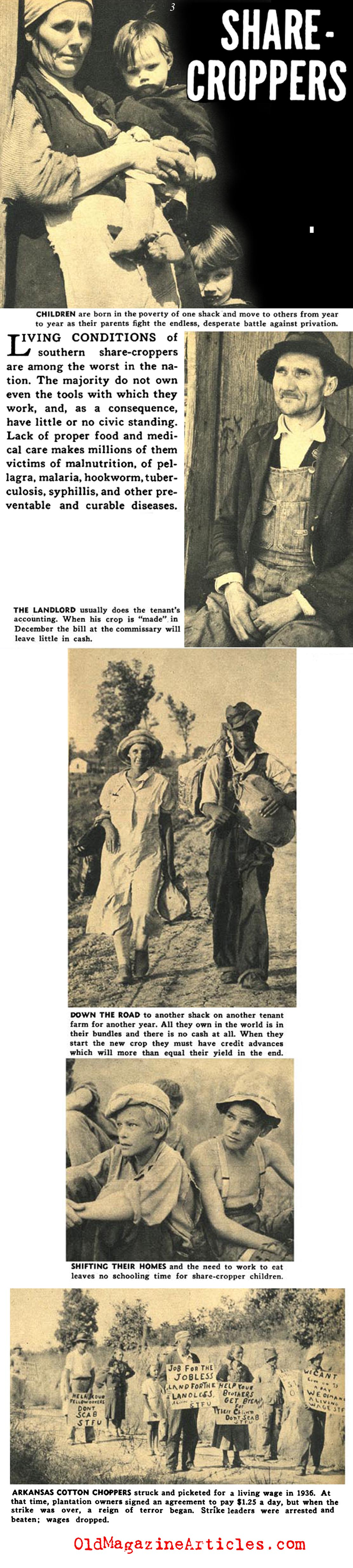 Labor Abuses in the South (Focus Magazine, 1938)