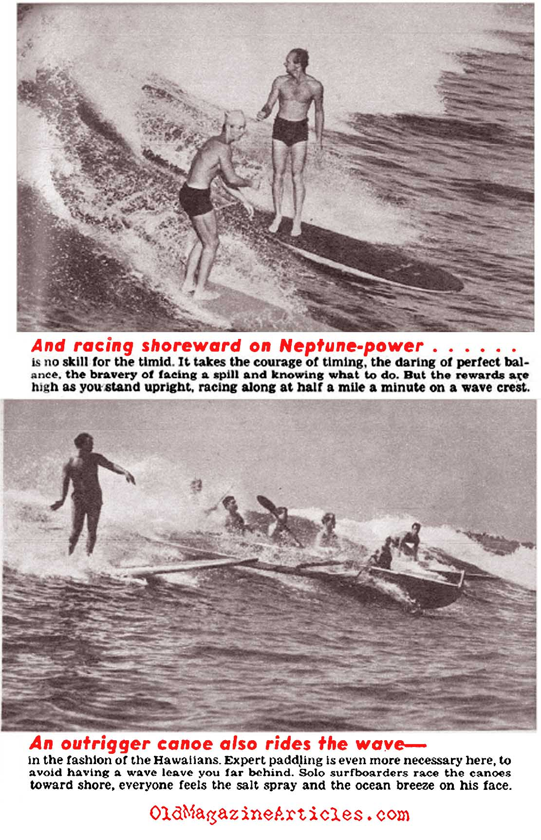 Surfing: The New Thing (Click Magazine, 1941)