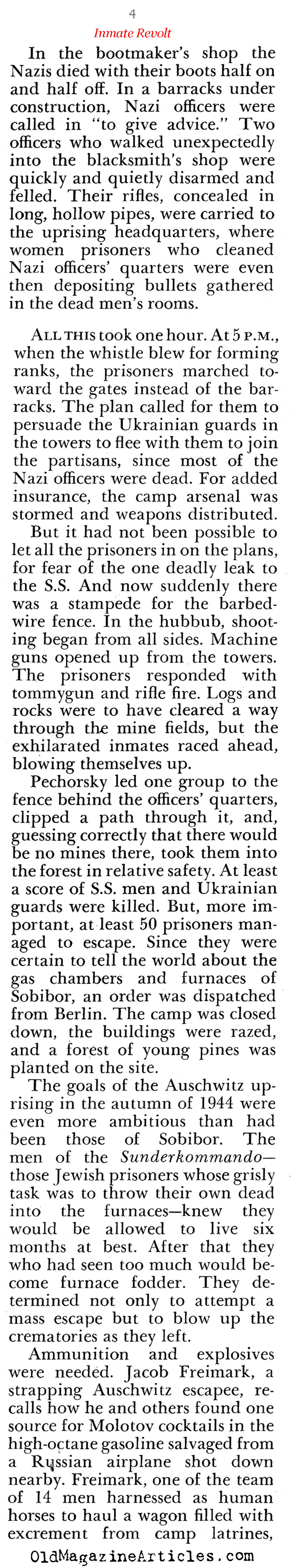The Concentration Camp Revolts (Pageant Magazine, 1966)