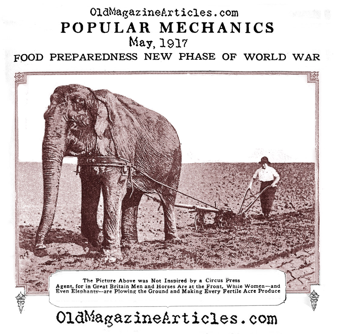 The Elephant on the British Home  Front (Popular Mechanics, 1917)