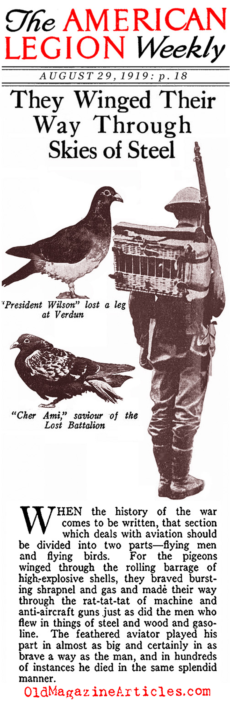 Carrier Pigeons of the US Army Signal Corps  (American Legion Weekly, 1919)